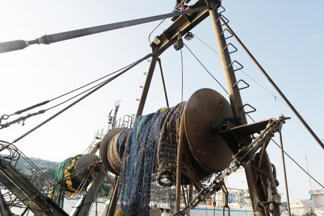 Fishguard fishing processor insurance
